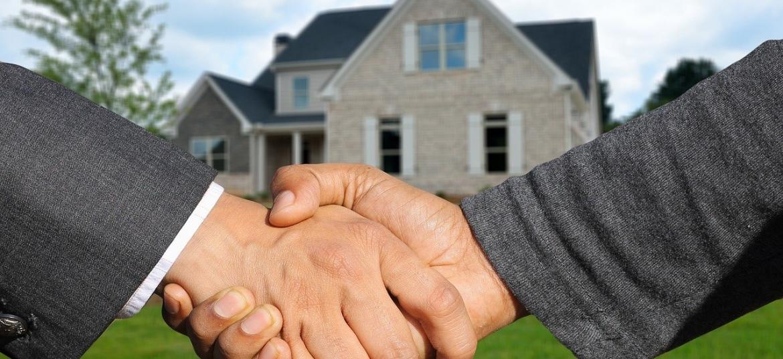 A hand holding a piece of grass